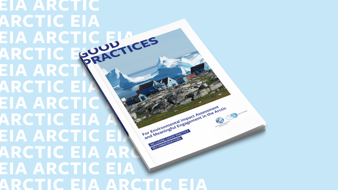 EIA_Report_Cover.png